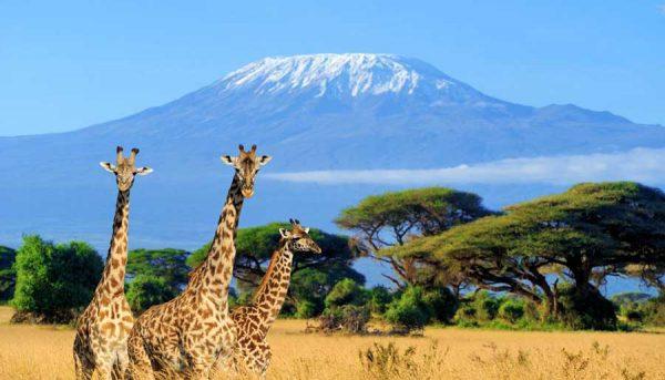 Kenia – Reisen in eine andere Welt